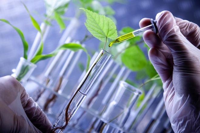 La planta que transforma las aguas residuales en agua limpia