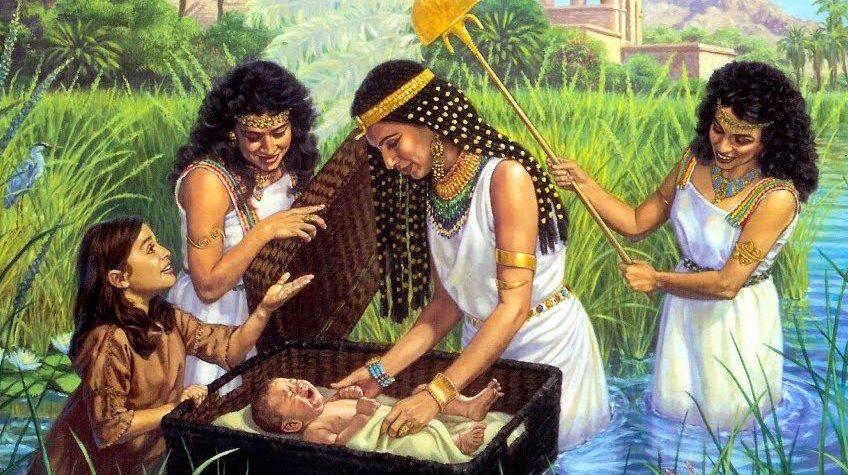 ¿Moisés fue prematuro?