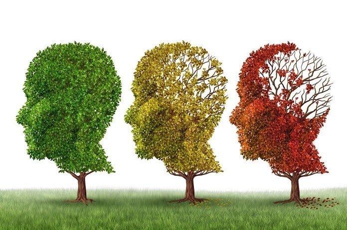 ¿Cuál es la edad de tu cerebro?