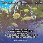 Censo internacional de vida marina: 20 de Diciembre