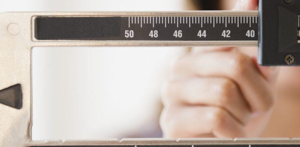 Comer las propias heces para evitar el rebote después de una dieta: estudio israelí
