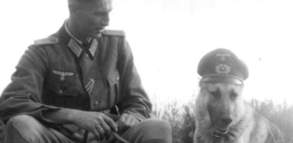 Los nazis, sus perros y los judíos
