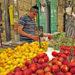 El costo para el ambiente del desperdicio de comida es enorme: estudio israelí