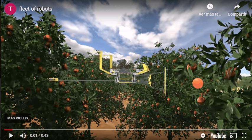 El increíble robot volador que cosecha la fruta de los árboles