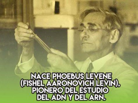 Phoebus Levene, pionero del estudio del ADN y del ARN