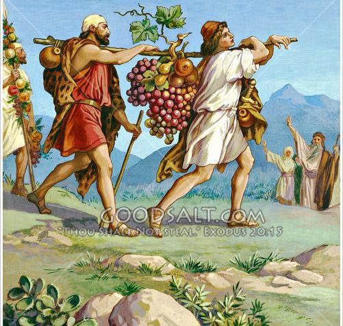 Alimentos afrodisiacos de la cocina judía: las uvas
